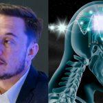 Elon Musk pronto a collegare un cervello umano a un computer